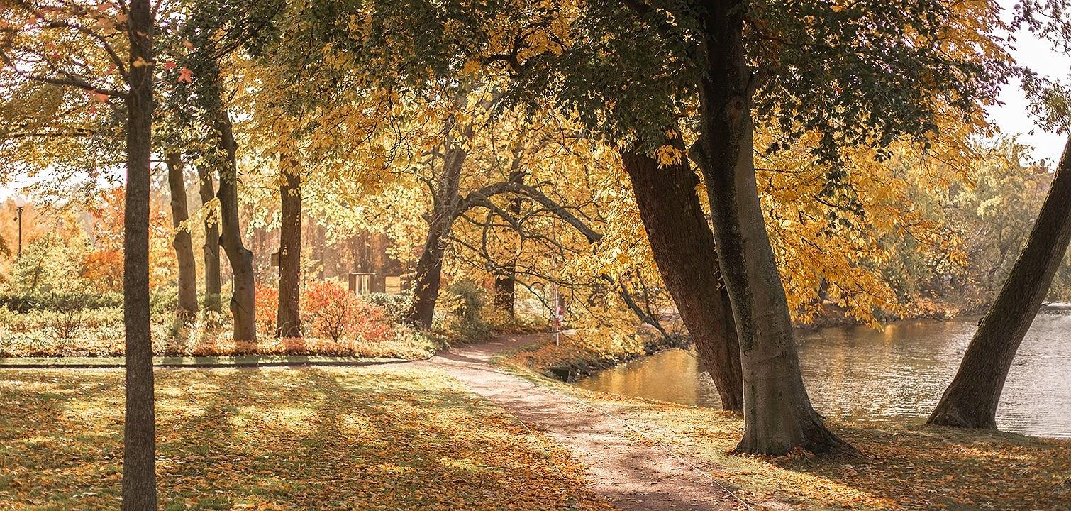 10 anledningar att älska hösten