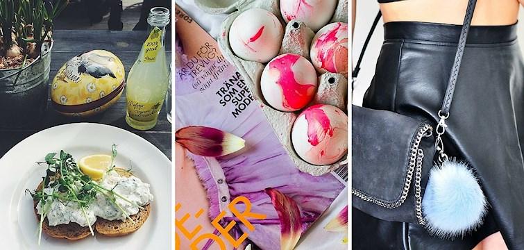 Nouw bloggarna har njutit till fullo av påsken! Kika in här för att se vad de haft för sig.