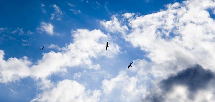 Jag är vilse. Jag är verkligen vilse. Hela jag är där någonstans ute, splittrad, delad. Men vart är jag egentligen?