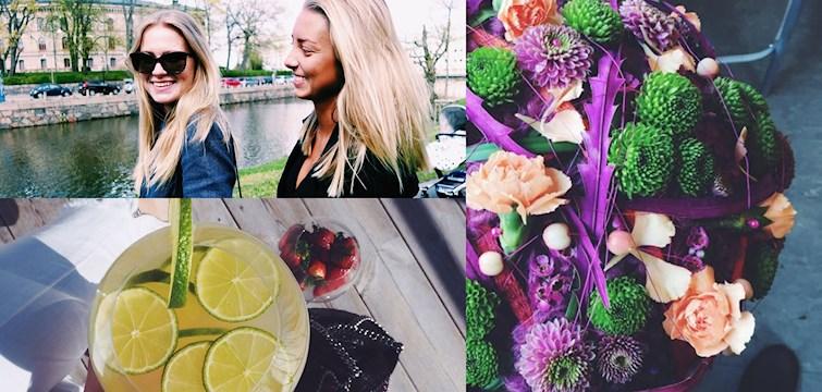 Blommor, hälsosam mat och massor med sol har våra bloggare spenderat tiden med under veckan som gått.