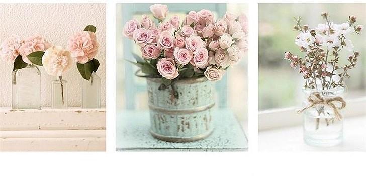 Hon utbildar sig till florist och bloggar därmed om blommor och om vad hon lär sig på sin utbildning. Bilder är viktigt i en blogg och skor är det bästa som finns! Tjejen bakom Veckans blogg här på Nattstad är 17-åriga Julia.