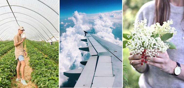 Sommeren er for alvor begyndt. Bloggerne rejser til udlandet, laver lækre sommerdrinks, tager i sommerhus, plukker jordbær, viser de fineste sommeroutfits frem og meget mere. Læs med her og bliv inspireret!