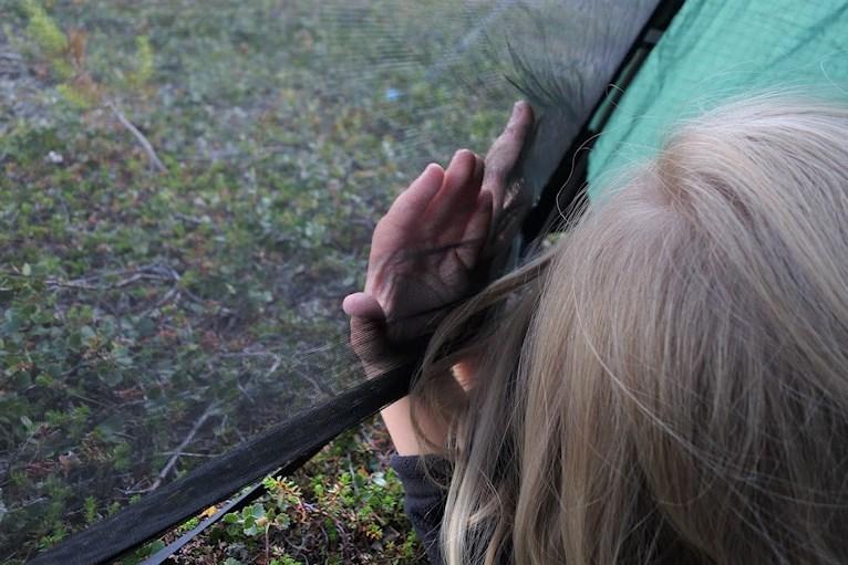 Vandring bestiga Städjan familj med barn tälta sova i tält mata myggorna utanför myggnät vid Nipefjället Dalarna naturreservat skog hemester svemester klimatsmart hållbart.
