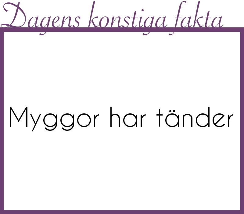 myggor