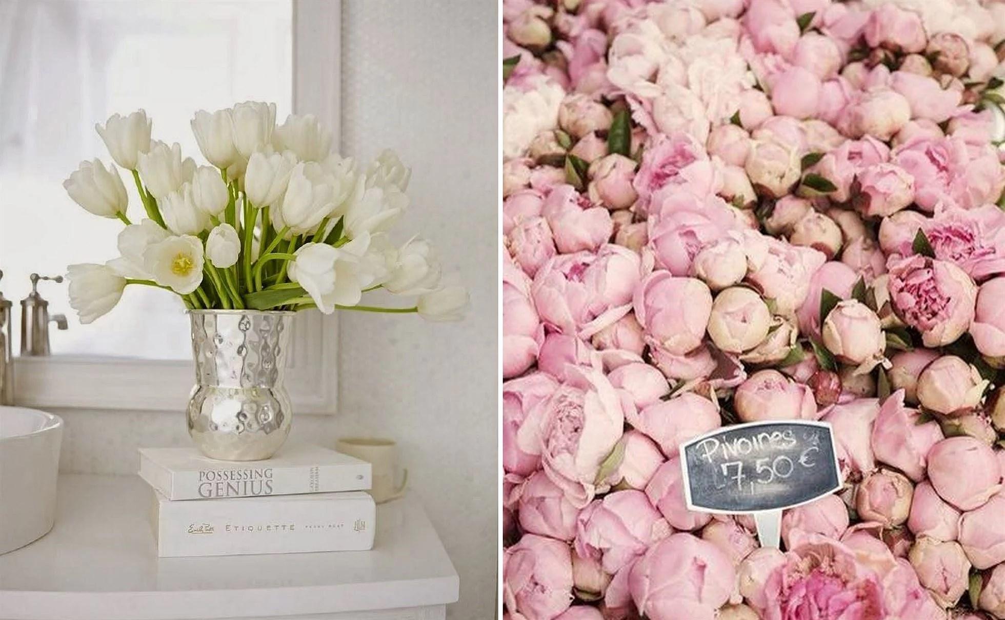 10 FAVORITES: CUT FLOWERS