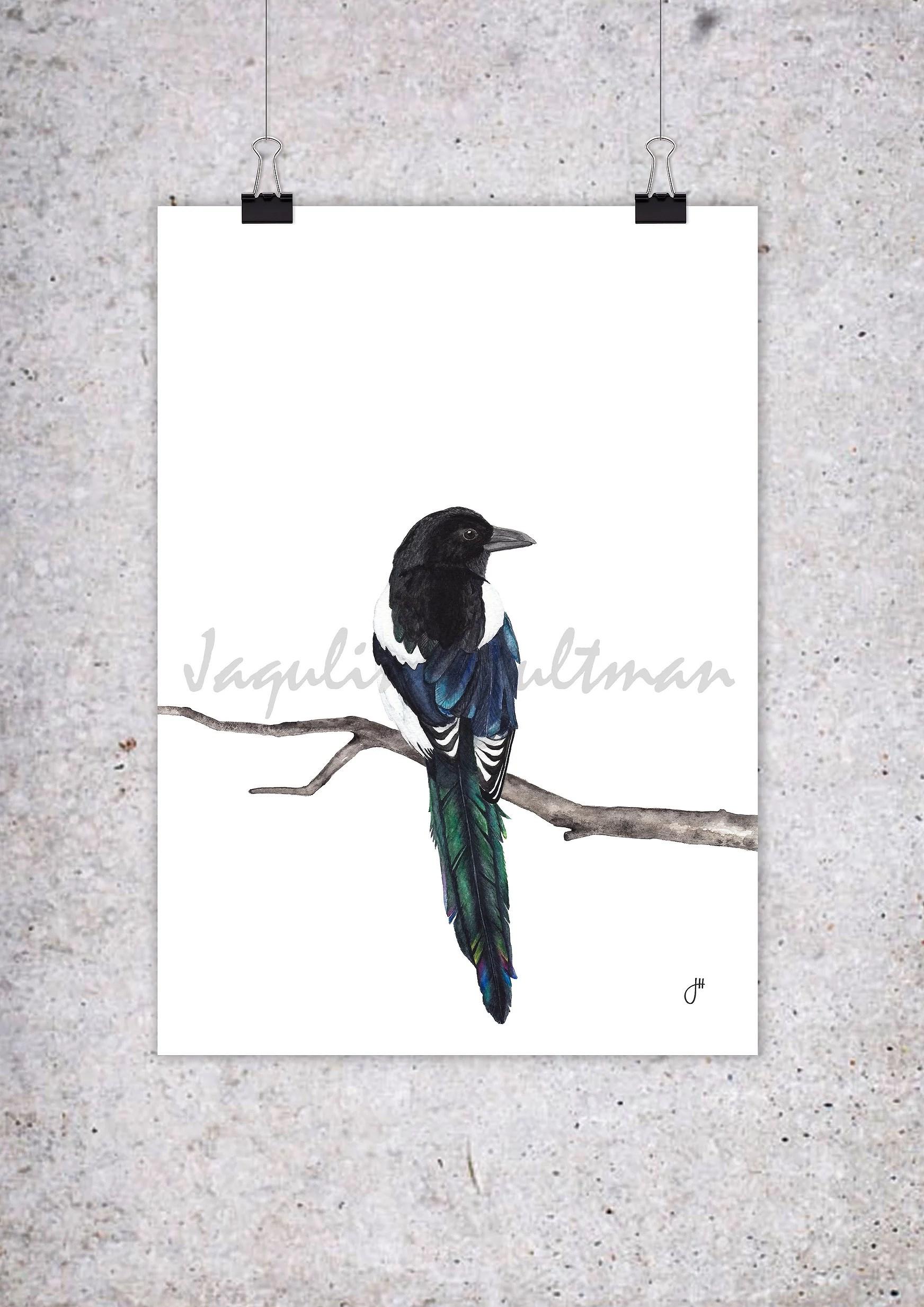 Prints. Akvarellprint. Affisch. Skata