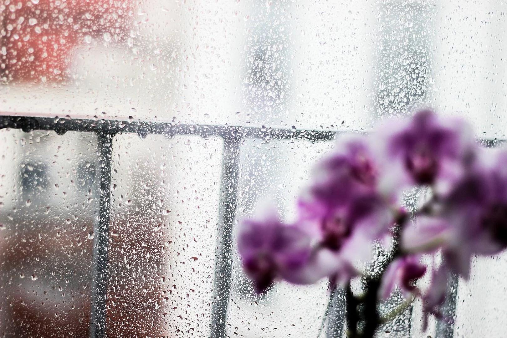 En grå och regnig måndag.