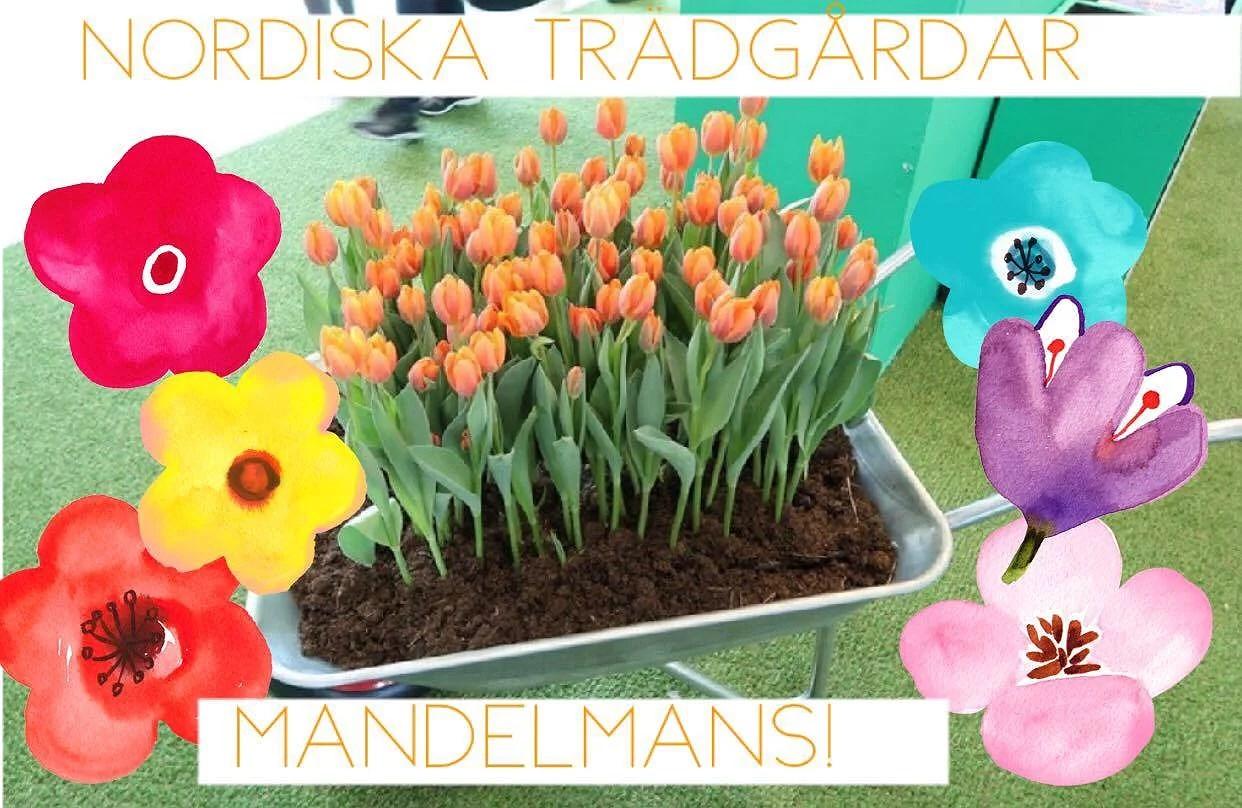 VLOGG! Nordiska trädgårdar & Mandelmans