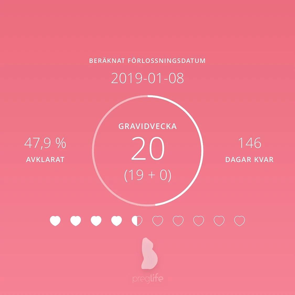 Gravid vecka 20
