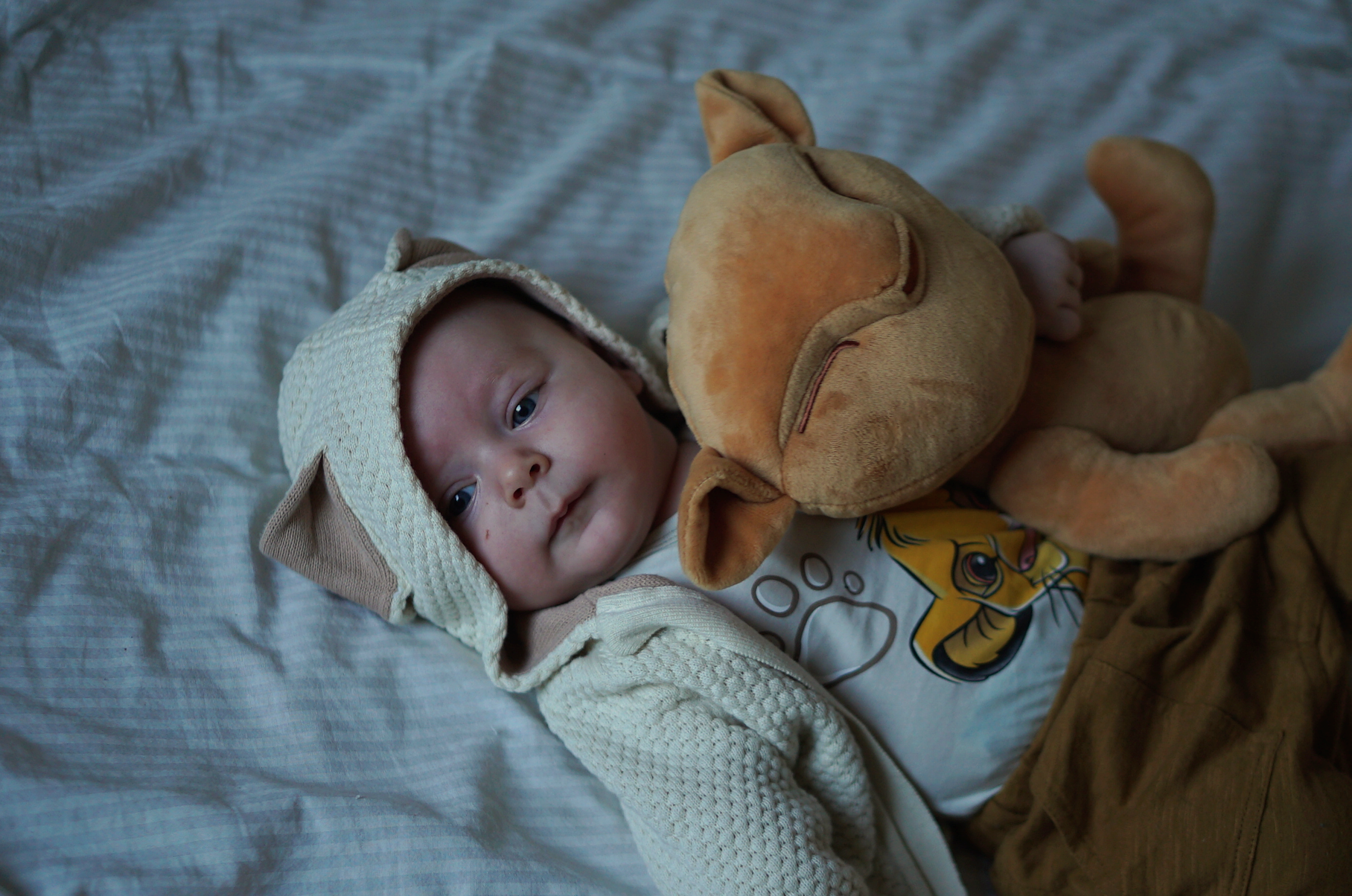 Disney Friday: My Little Simba