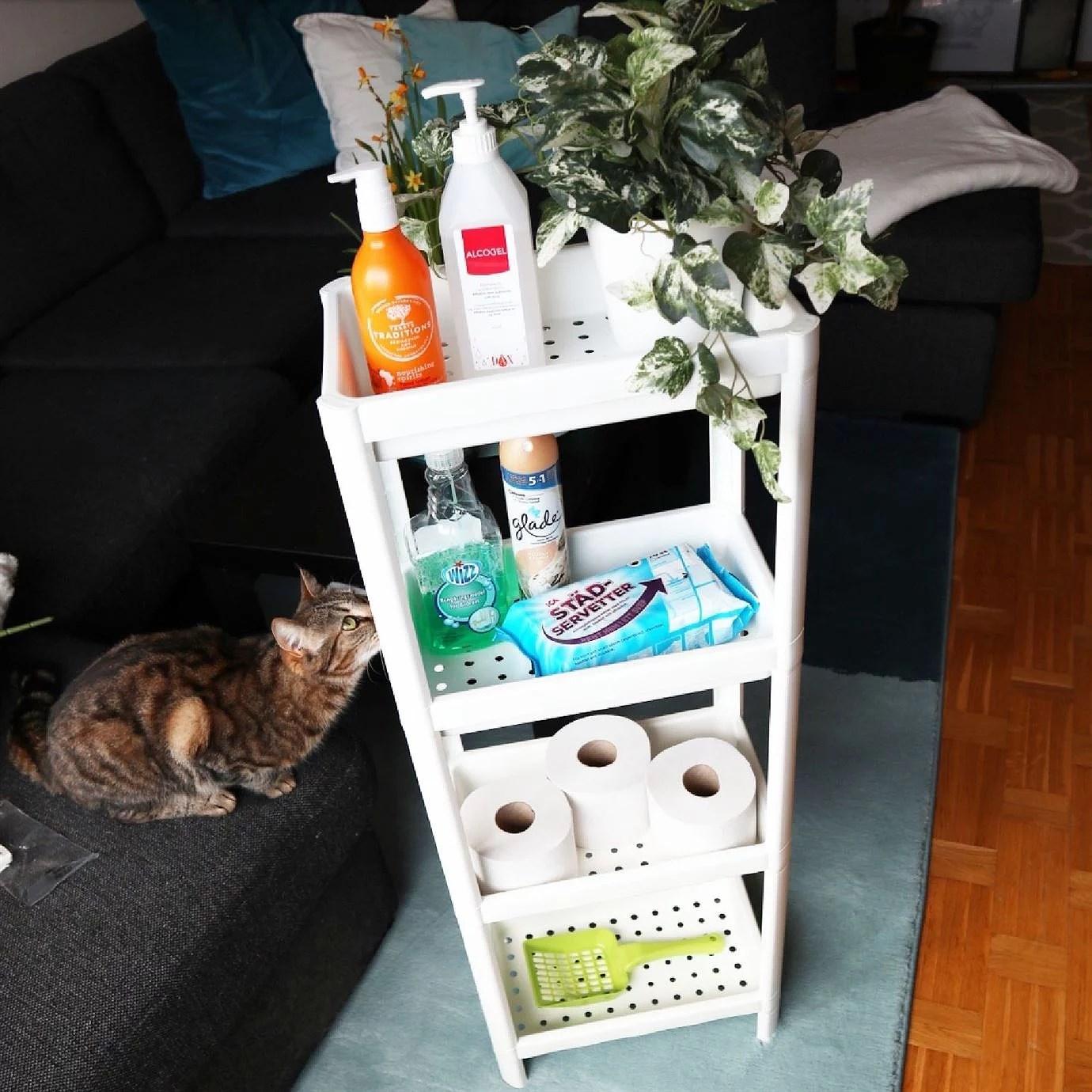 Badrumshylla 99 kr från IKEA