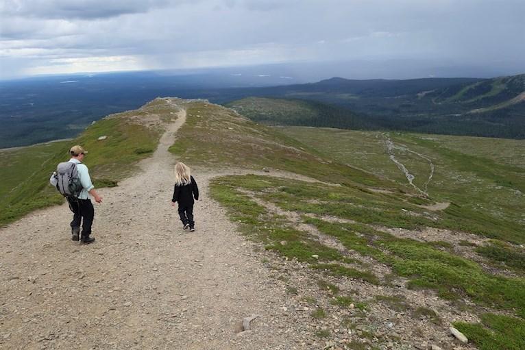 Vandring bestiga Städjan familj med barn Nipefjället Dalarna naturreservat skog hemester svemester på väg ner från toppen med milsvid utsikt.