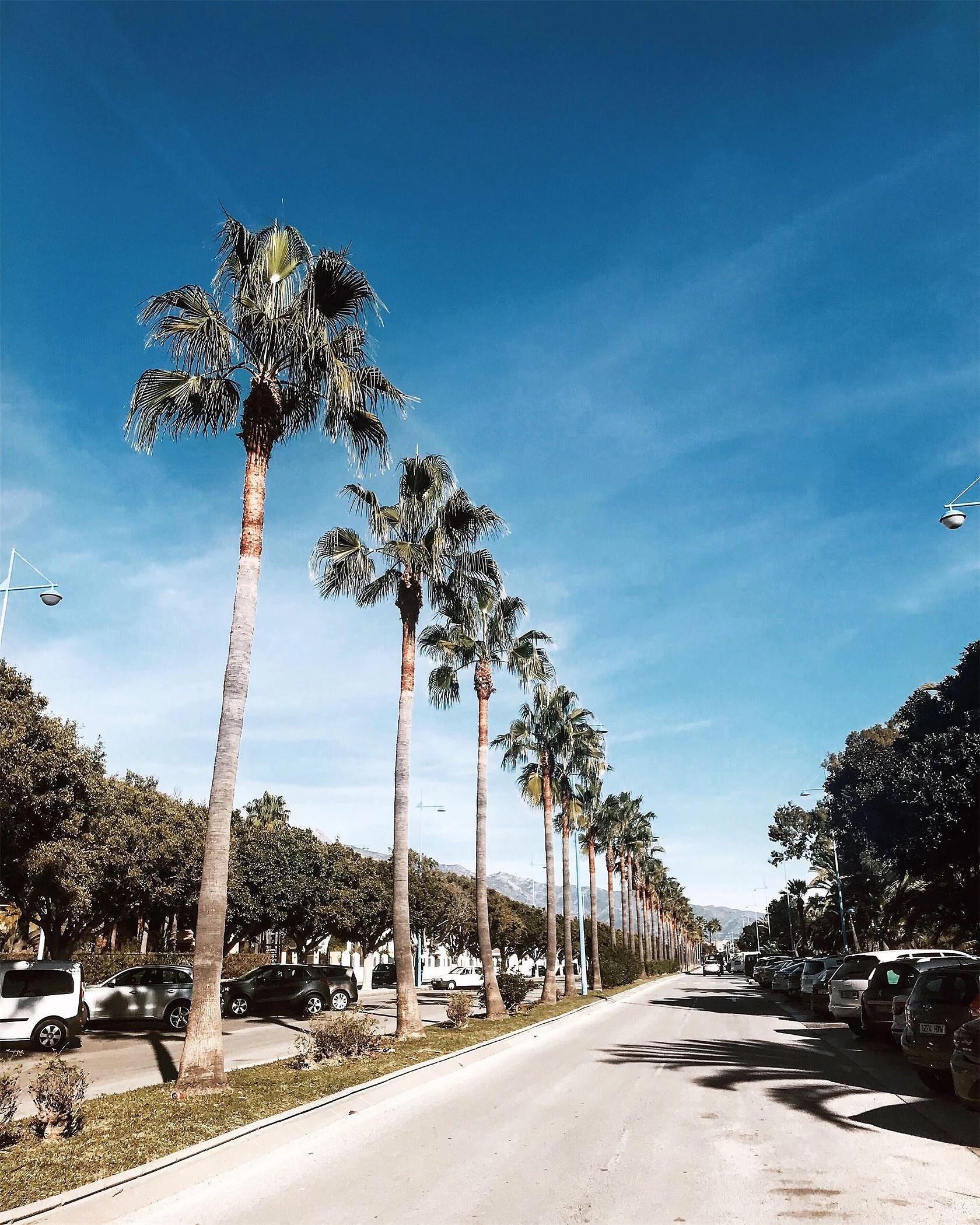 Bilder från Marbella