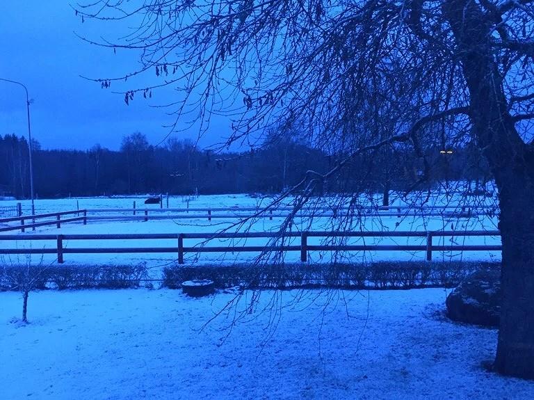 Snö? || Vad händer i veckan
