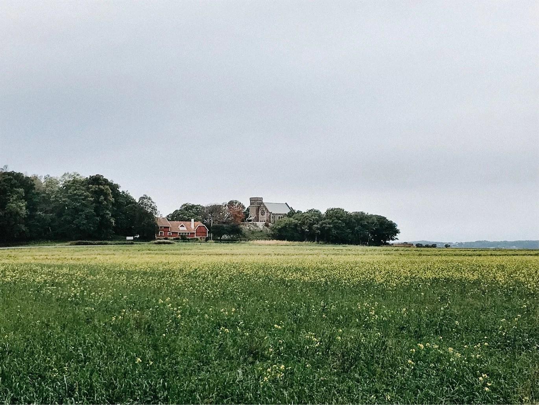 Ensam på slottet