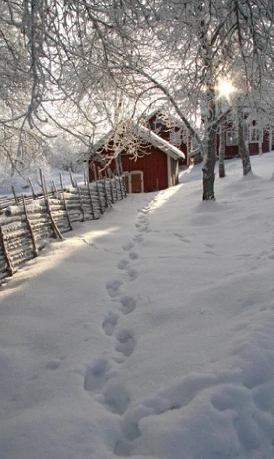 snow ?