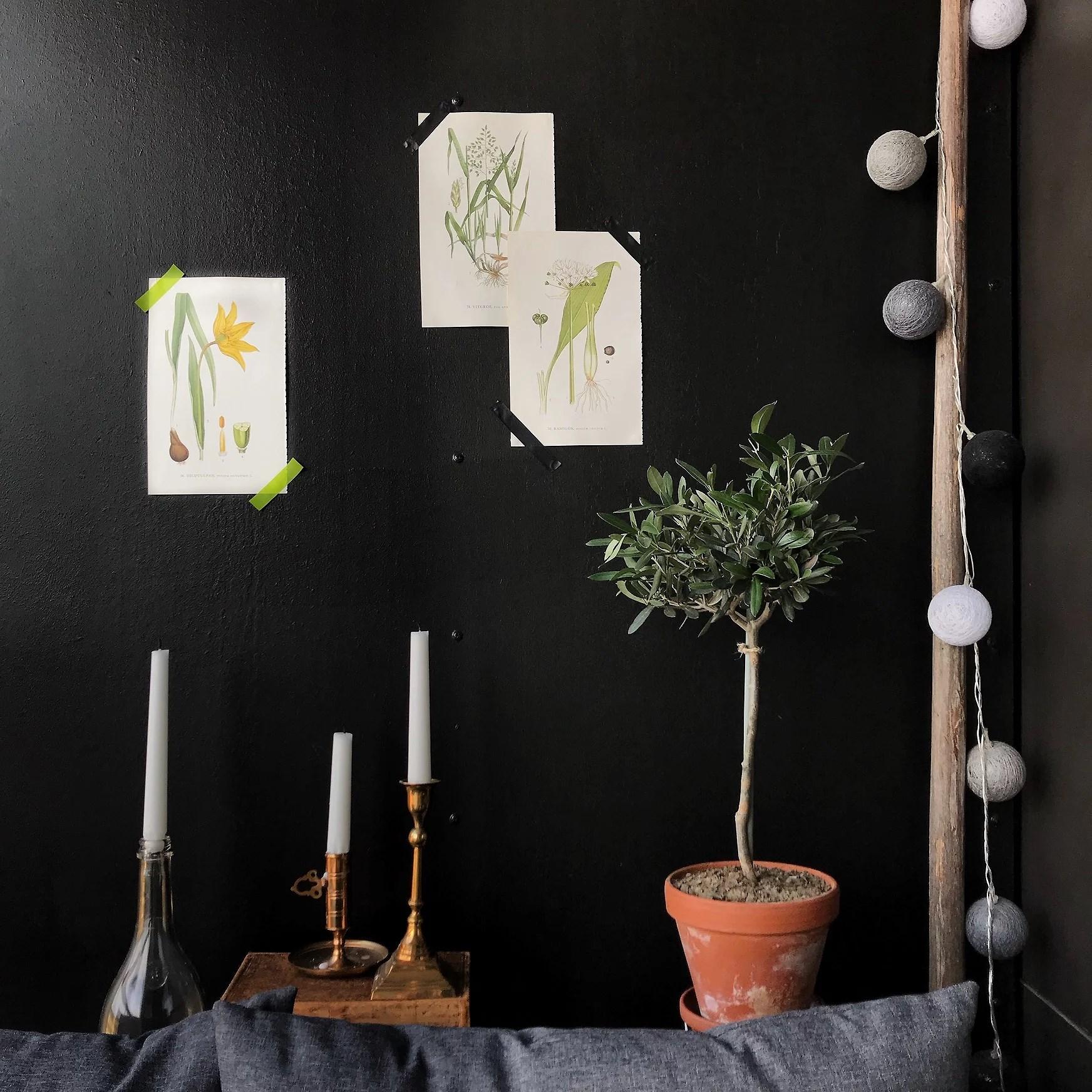 Blom-affischer från en loppis-flora