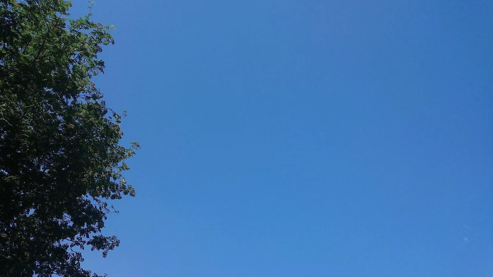 Inte ett moln