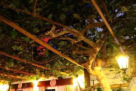 Äta under vindruvorna