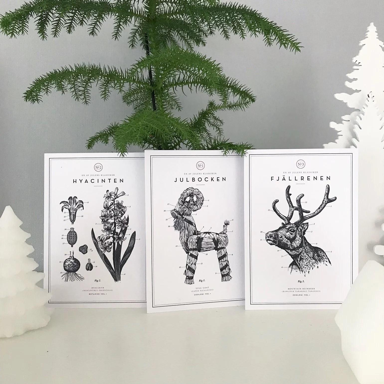 Bästa budgettipset i jul, gratis!