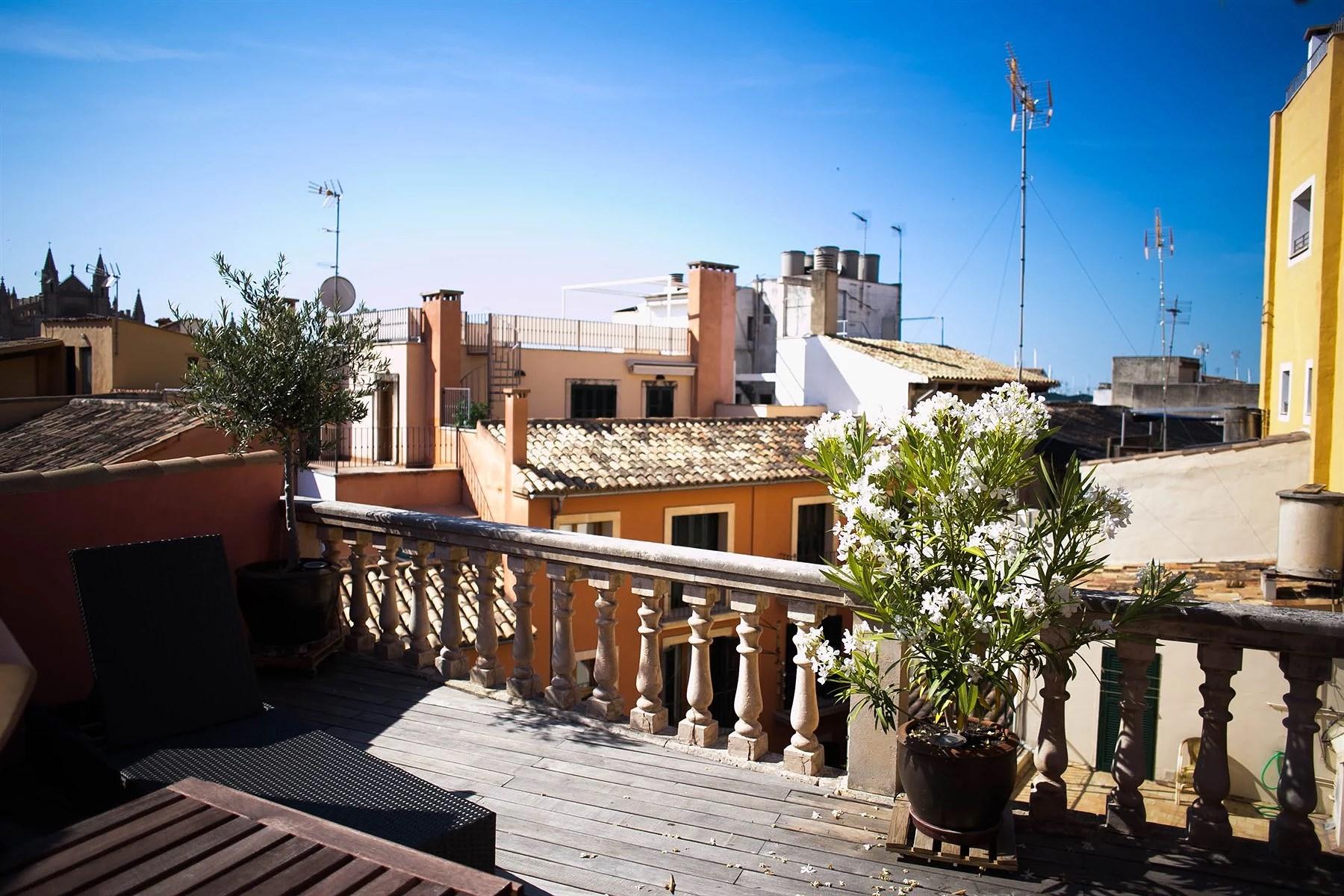 Palma (1 of 1)-6