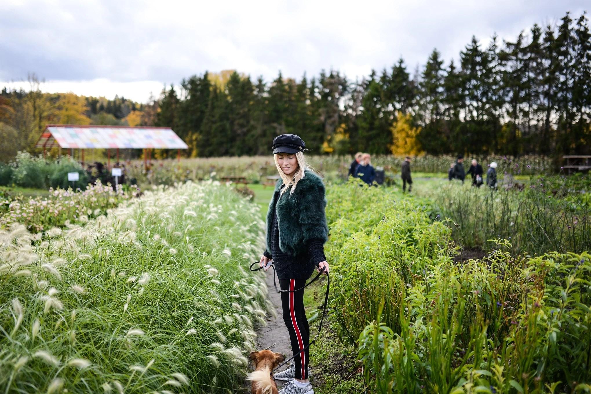 Ulriksdals slottsträdgård och tunnbrödrulle