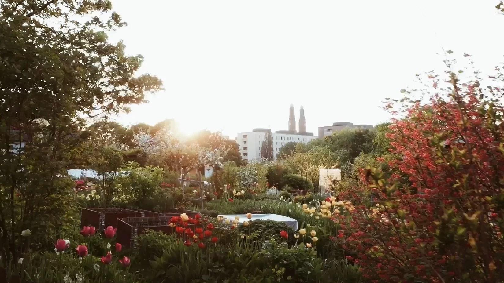 AURINGONLASKU TANTOLUNDENILLA + VIDEO