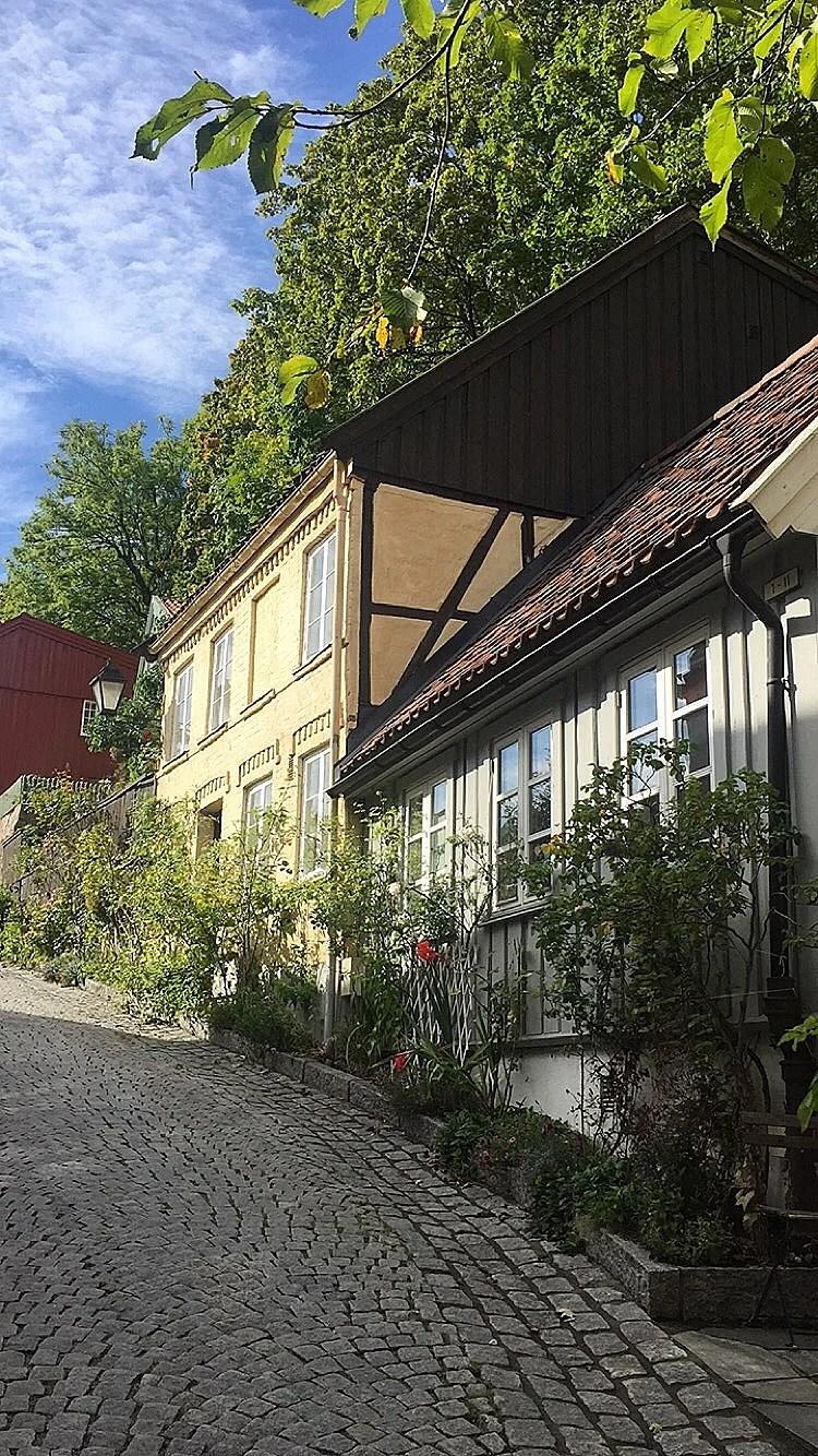 Oslove