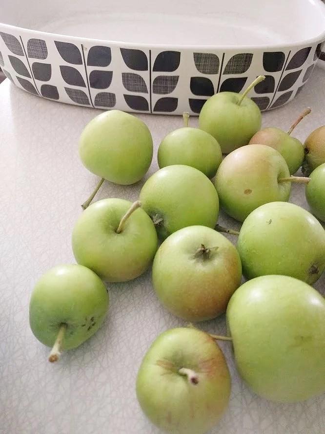 Äppelpaj hembakad hemgjord på avplockade för små äpplen äppelkart kart i form med retro mönster i svart och vitt.