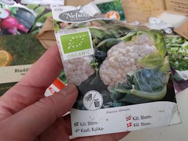Erbjudande billiga fröer hos odla nu blomkål och fröpåsar inventering 2019 sista chansen 75% rabatt.
