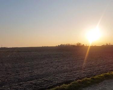 Utsikt över fälten i Abbekås, Skåne