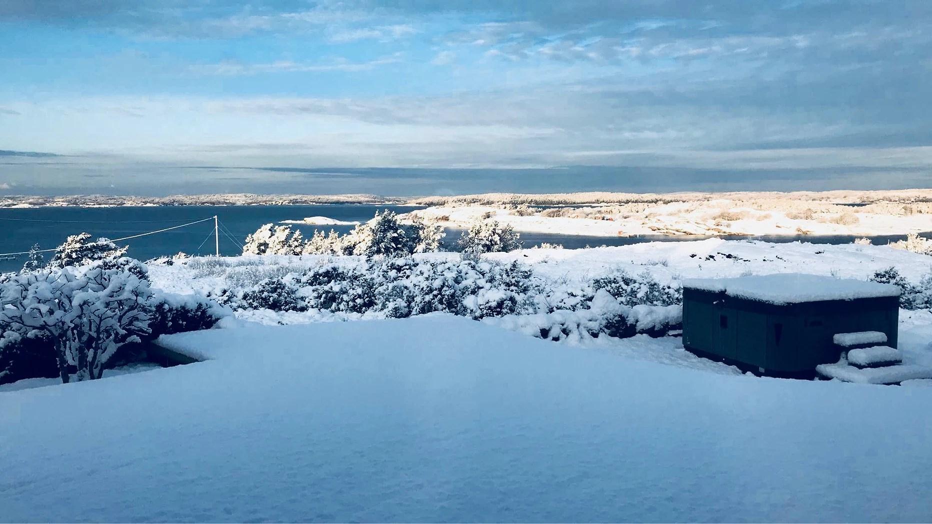 Hi my winter wonderland