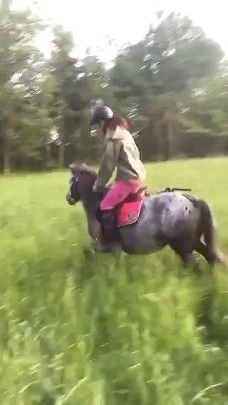 Ponnyn ballar ur-Film