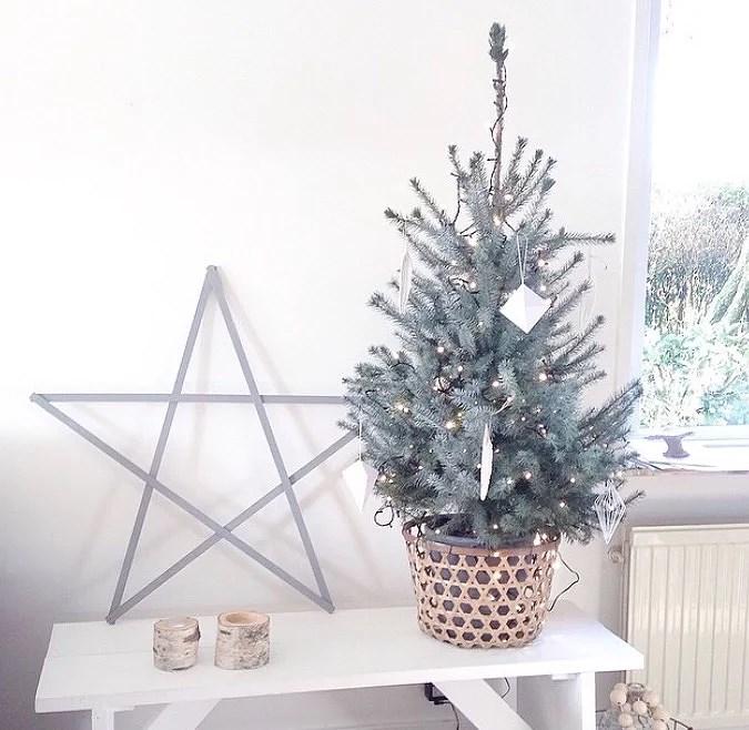 DIY kerstster