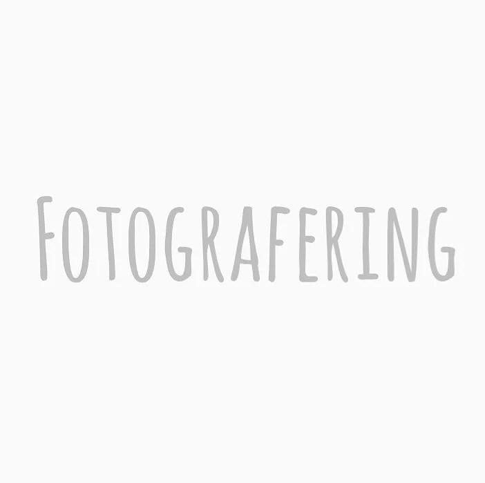 FOTOGRAFERING I HÖST OCH VINTER