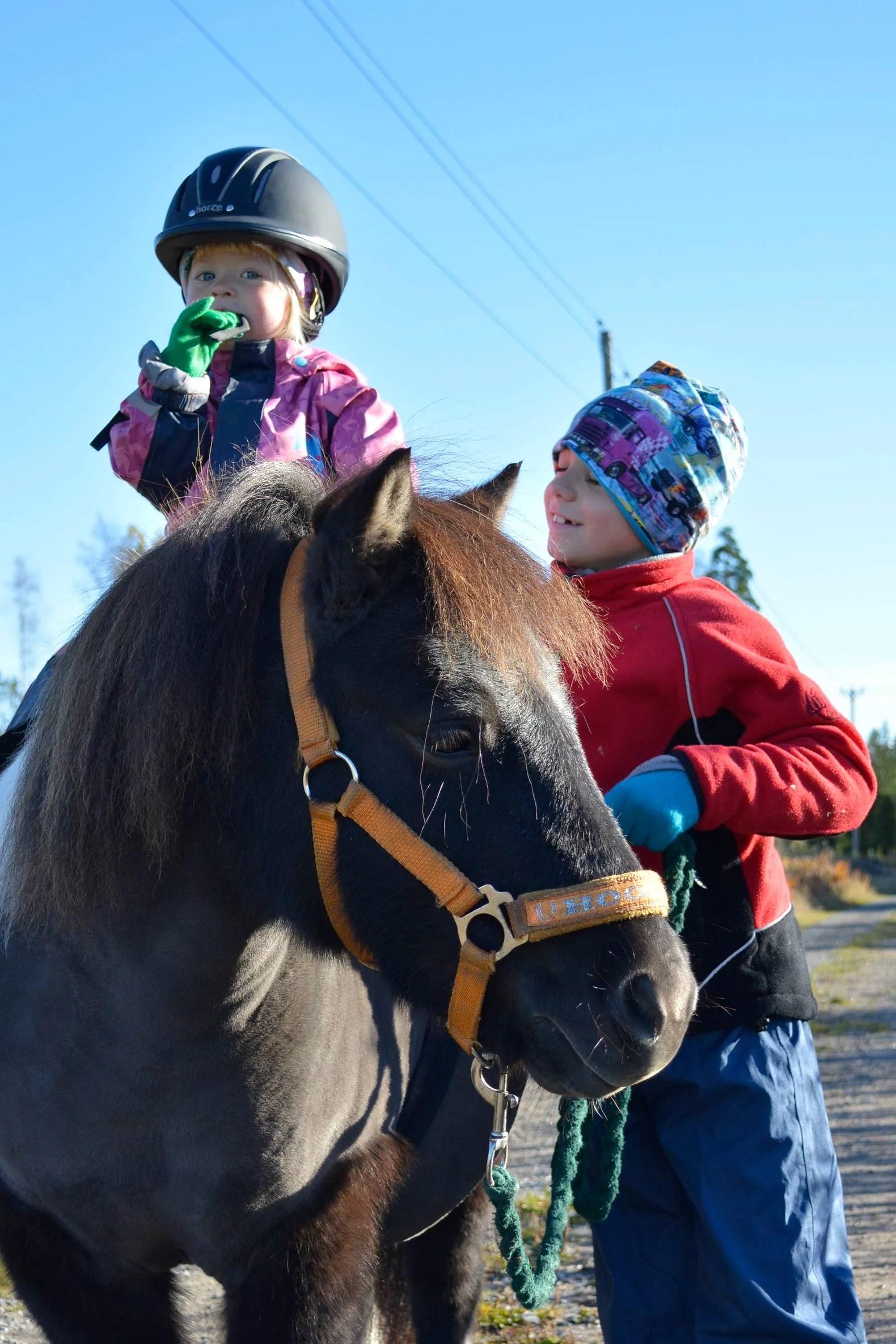 Häst dag för barnen