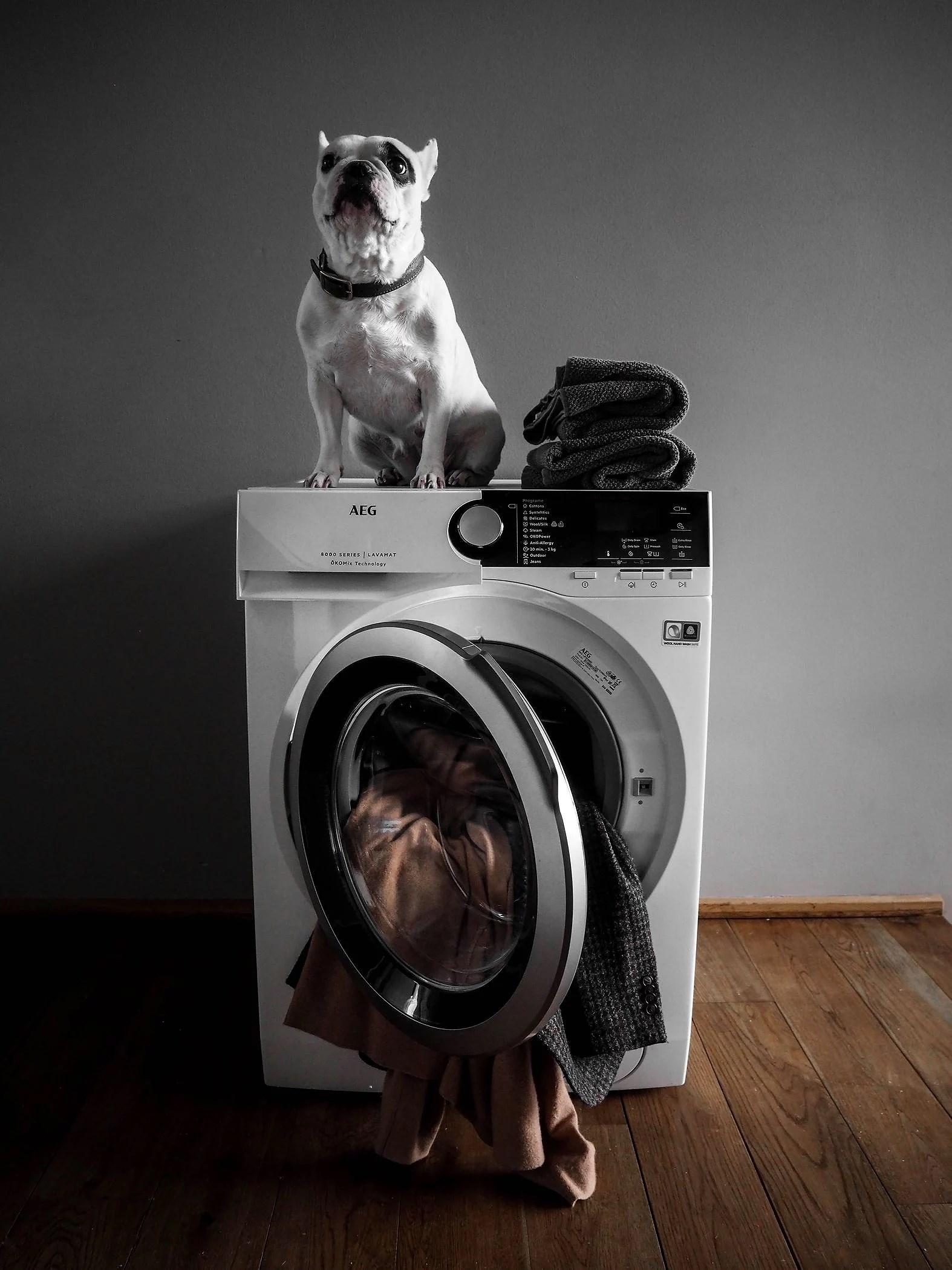 Machine Washing Fashion