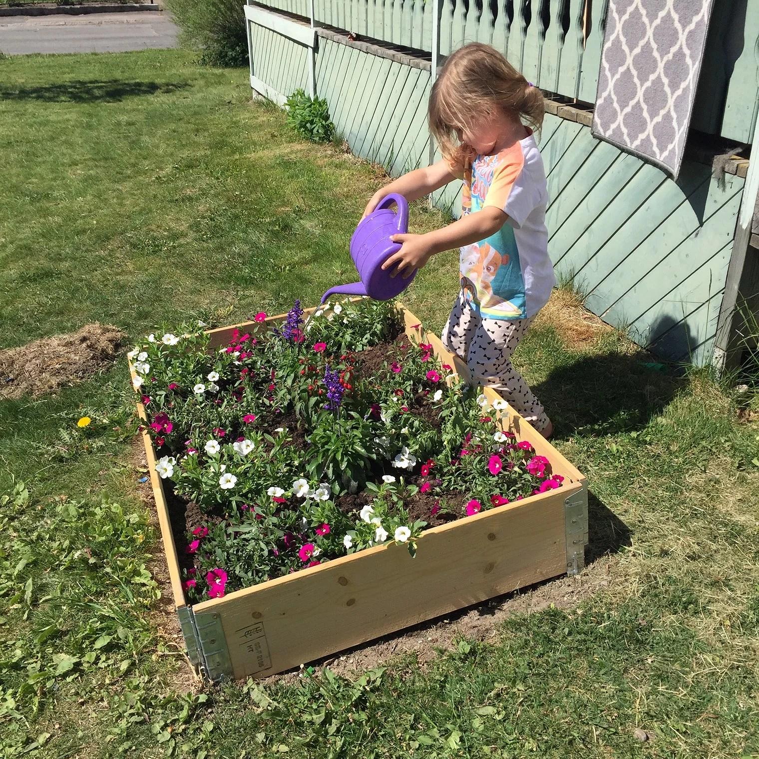 Trädgården, ja vår trädgård