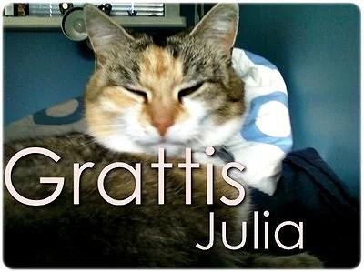 grattis julia Grattis Julia? | GANNARSSON grattis julia