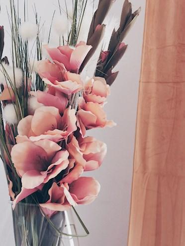 Här kan man köpa blomman