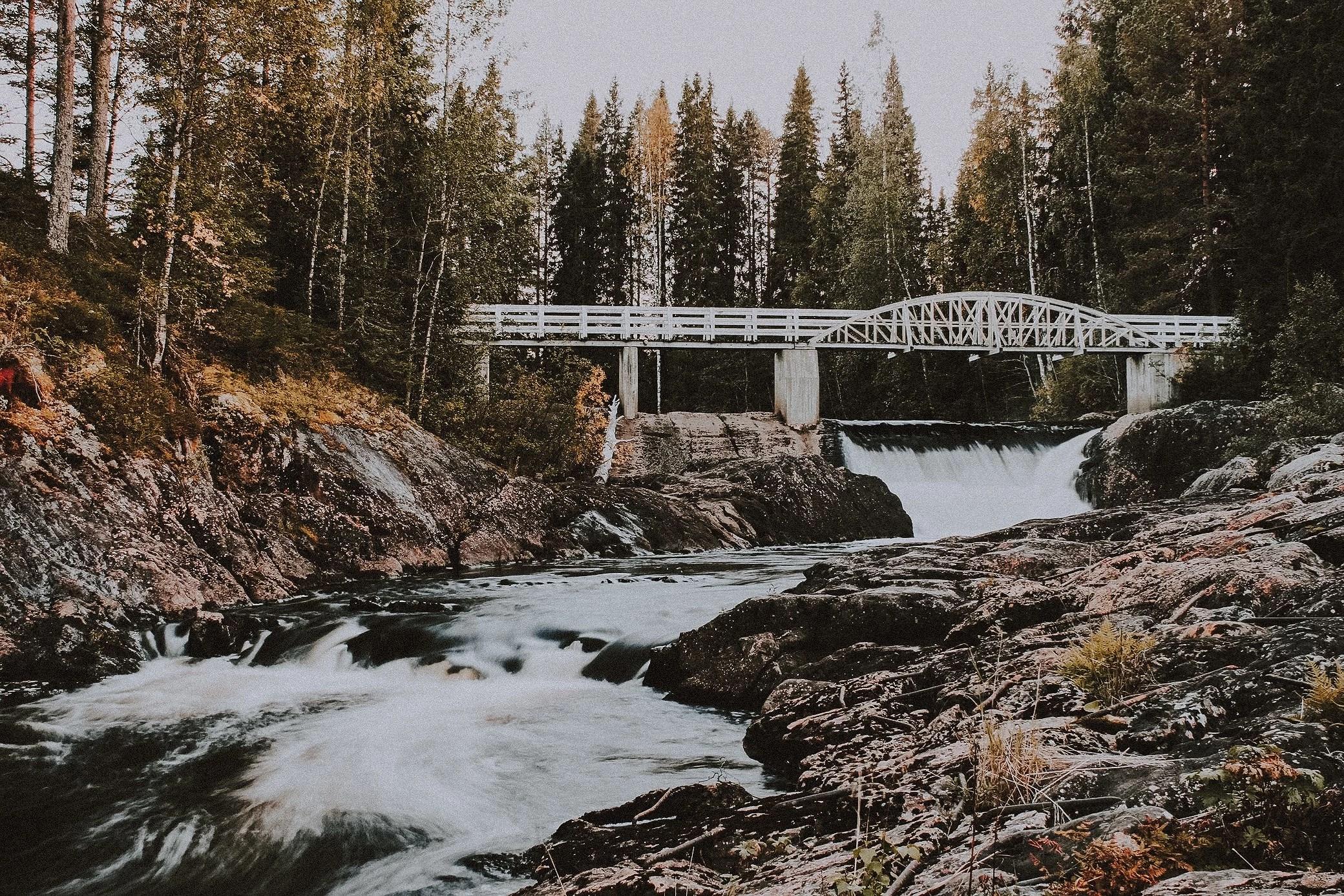 Naturen är en skönhet.