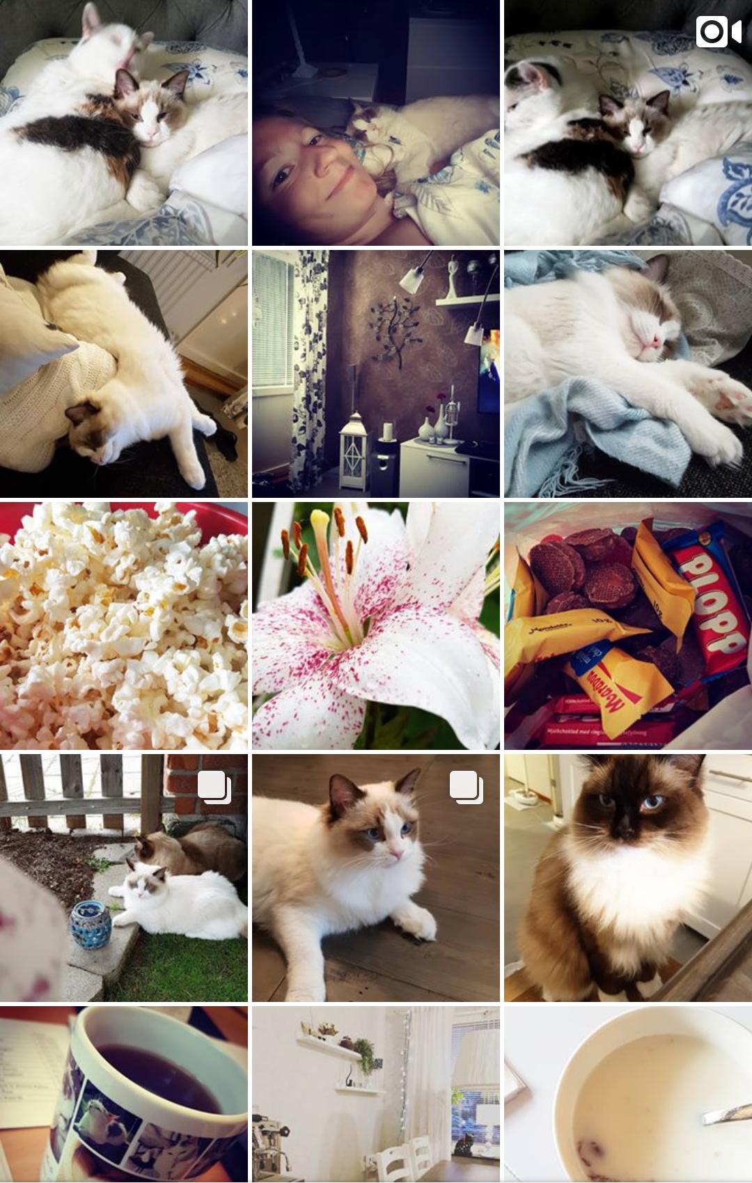 Följ mig gärna på instagram ♡