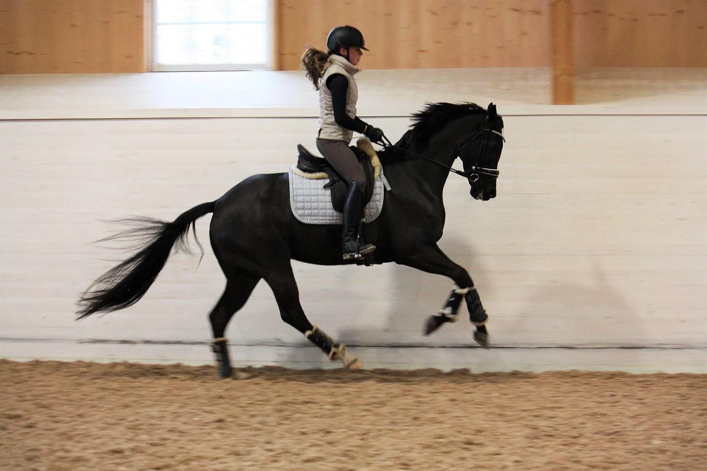 Ellas första tävling