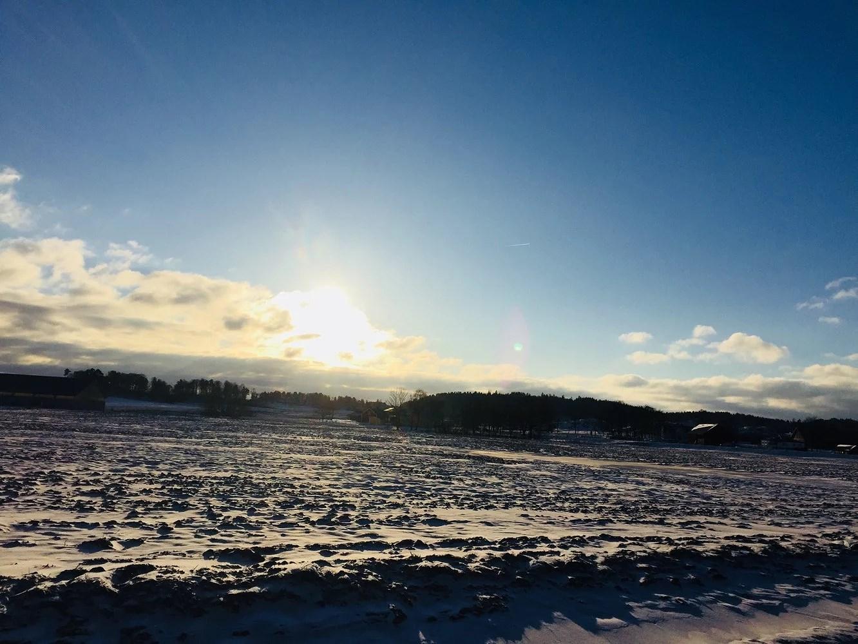 Fler vinterbilder från igår