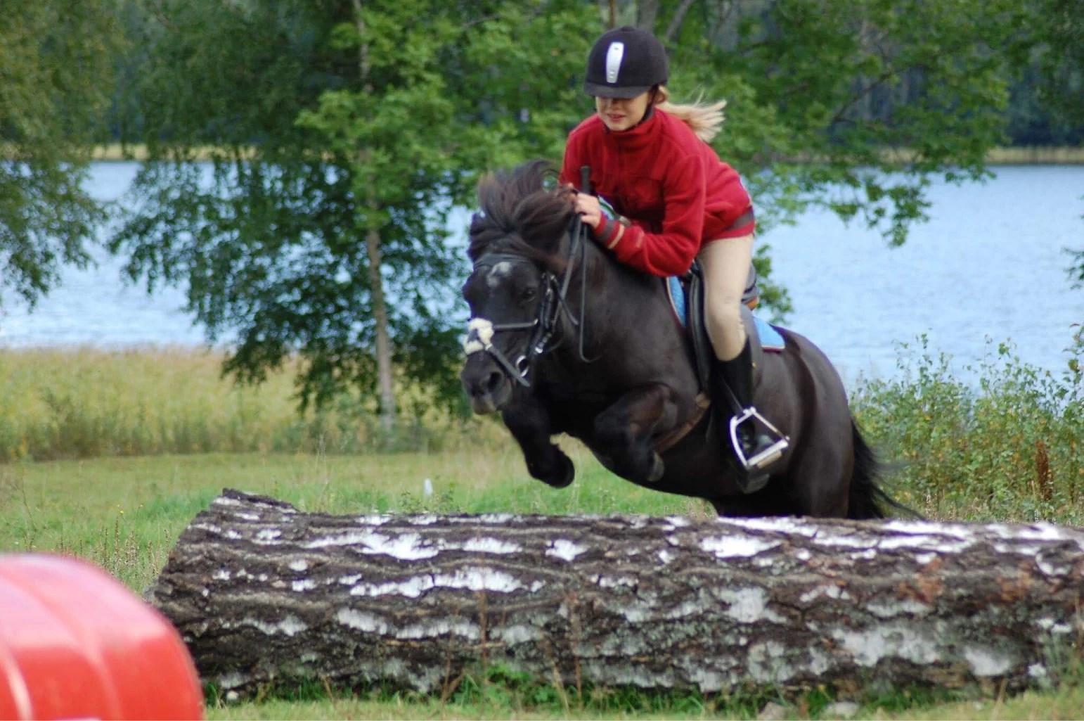 Mina första hästar - Carmen