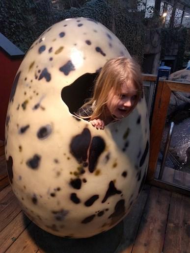 Universeum Göteborg hållbar intressant och rolig semester hemester för barn och vuxna huvud sticker ut ur jättestort ägg.