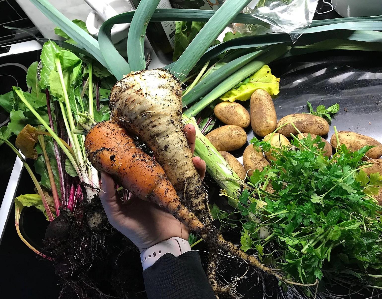 Monster grönsaker i trädgården