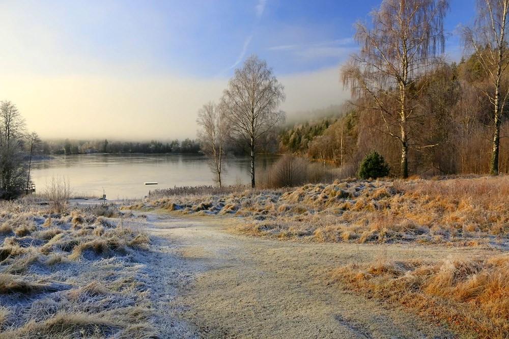 We live in a winter wonderland