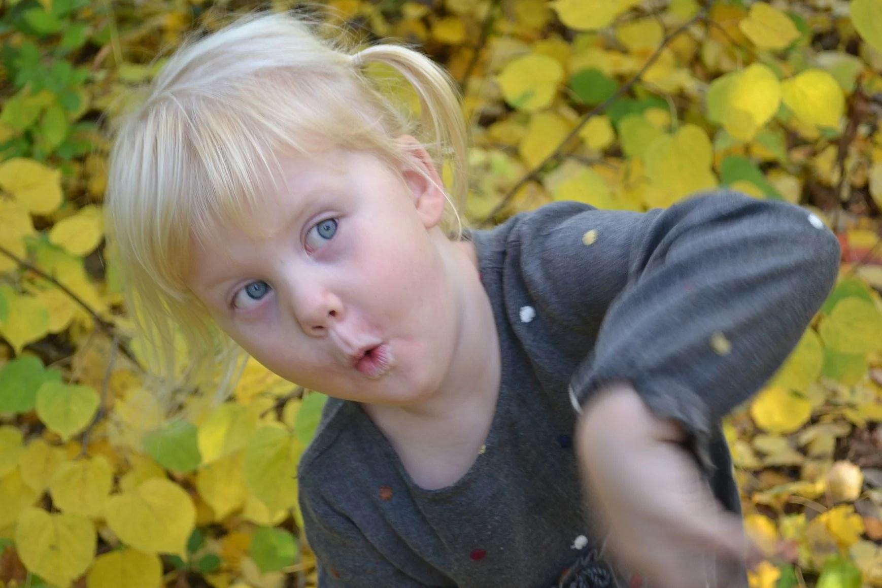 Fotografering - Hösten!