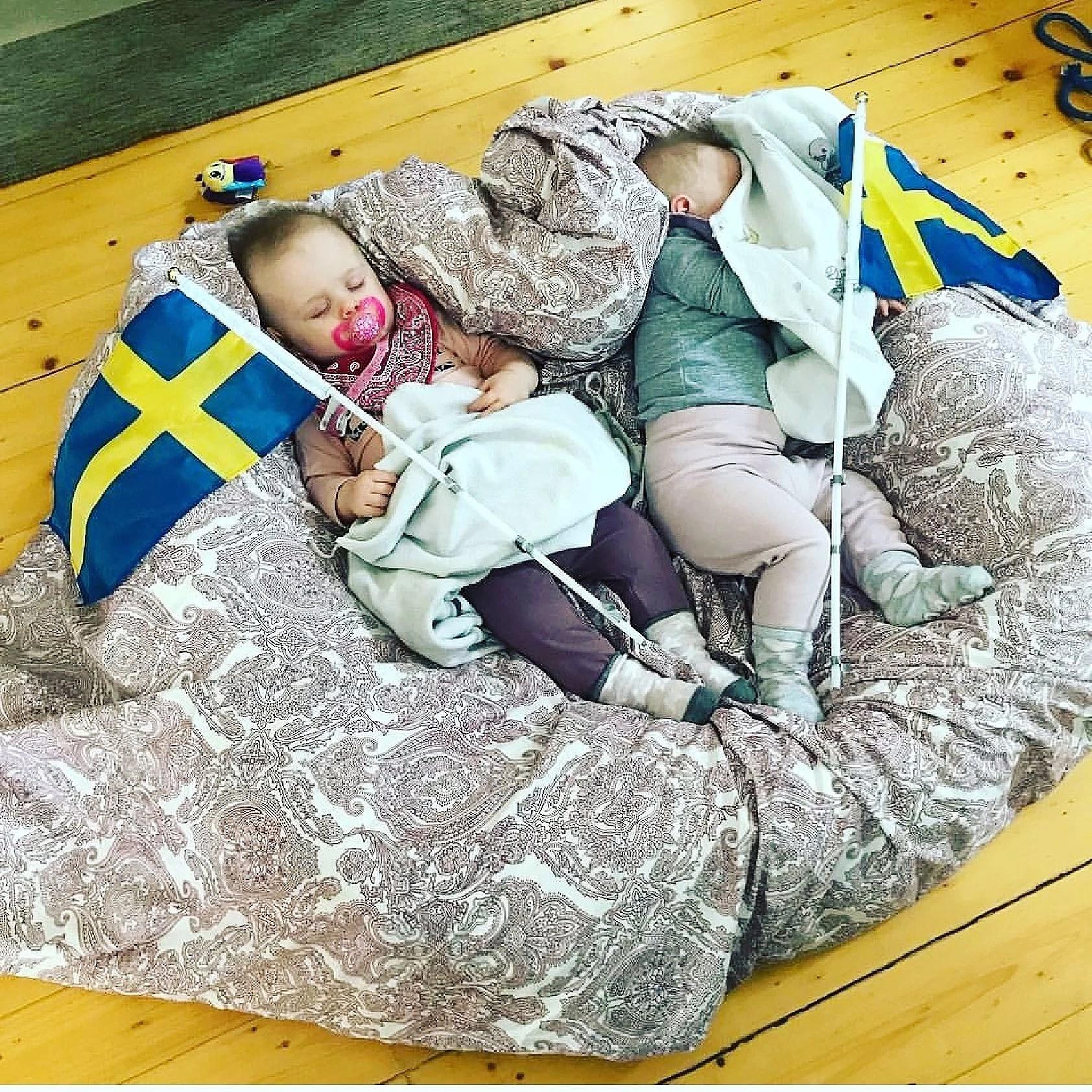 Heja Sverige 🇸🇪